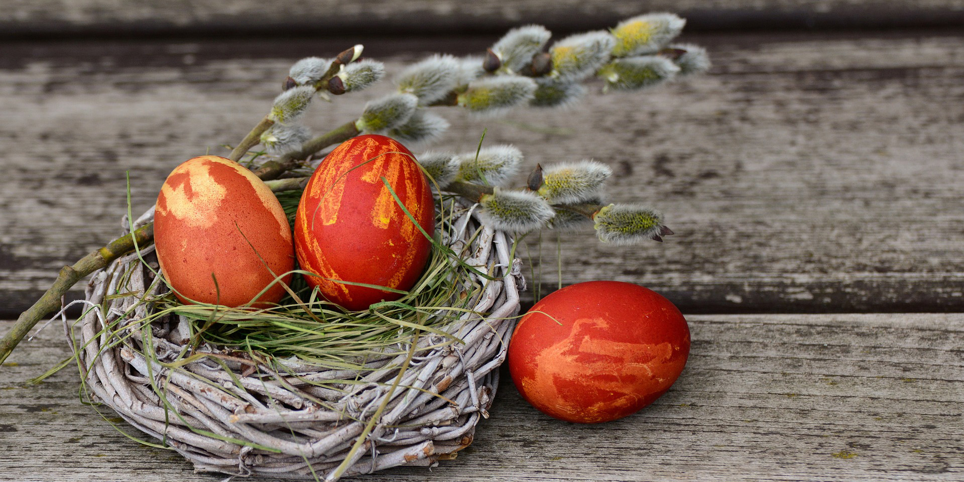 Aus Zweigen gefertigtes Osternest mit drei roten Ostereiern und Palmkätzchen